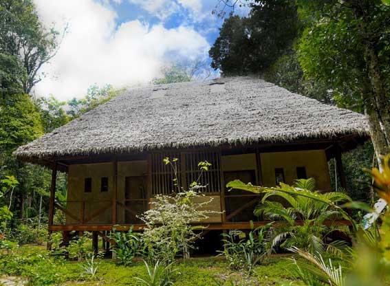 Amazon Villa