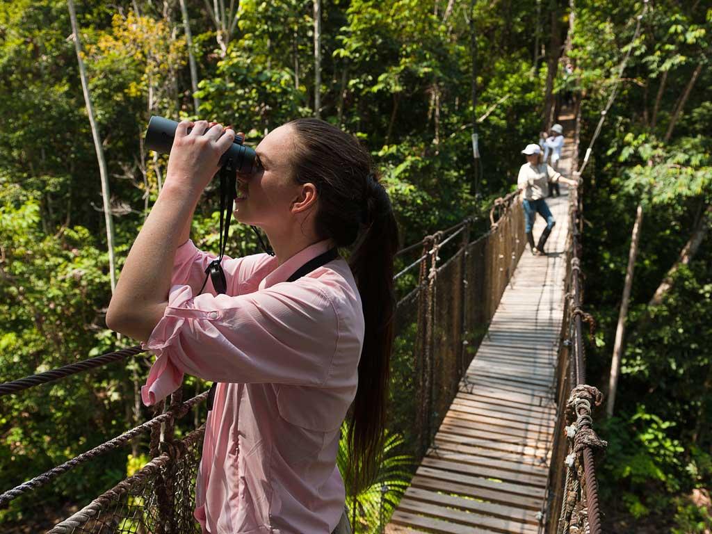 Iquitos-canopy-19