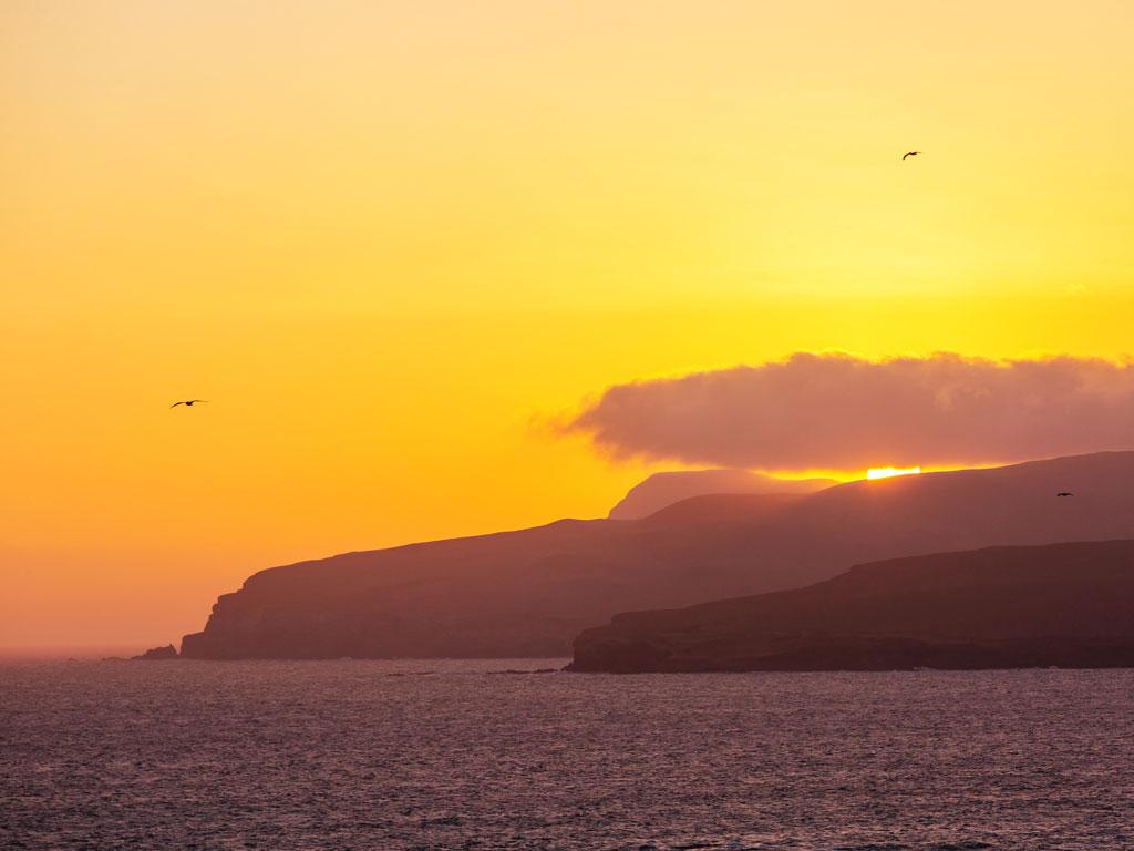 paracas-coastline-2-19